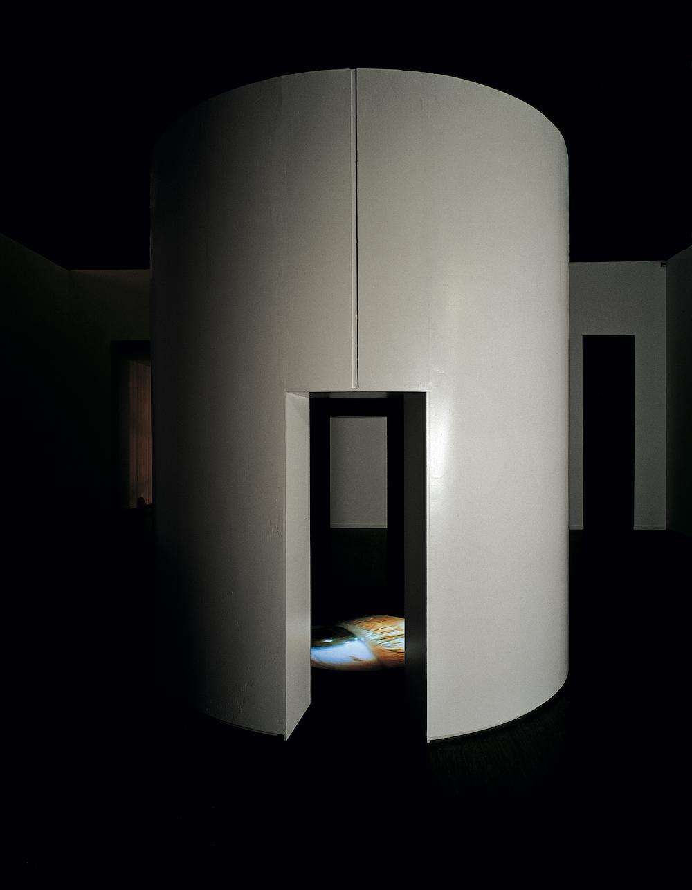 莫娜·哈透姆 | Mona Hatoum,《陌生身体》|Corps étranger,1994年.jpg