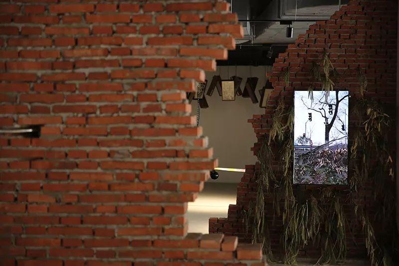 SUSAS用艺术连接上海的过去与未来——来自一位助理策展人的自白